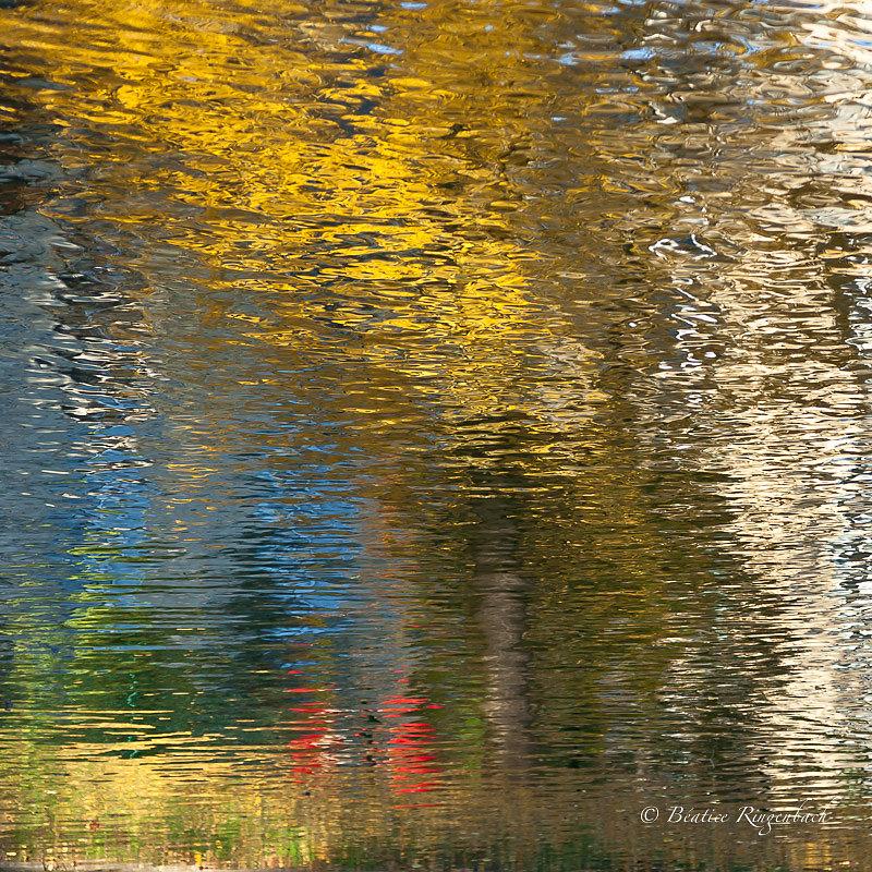 Reflets,textures, couleurs, effets