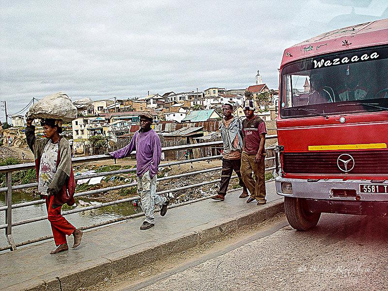 Madagascar 137