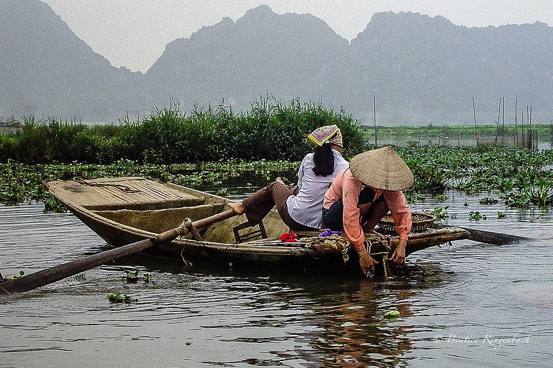 Vietnam 538860205