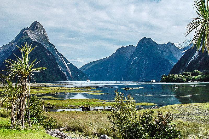 Nouvelle Zélande 136150204