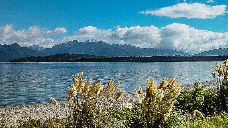 Nouvelle Zélande 7171160204