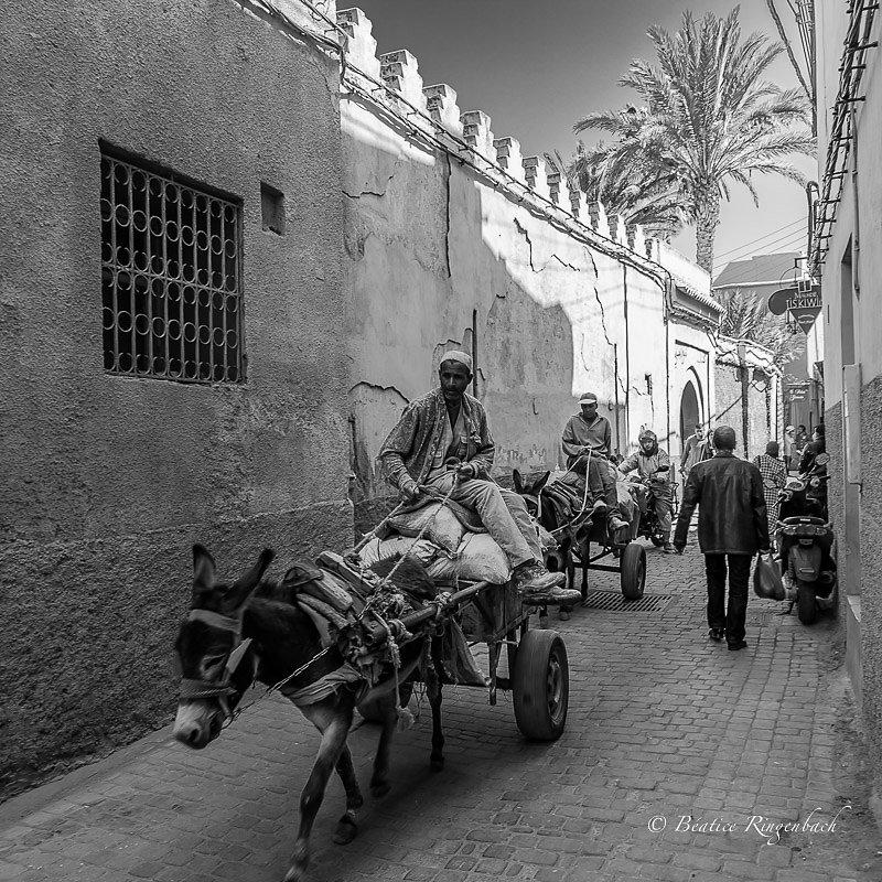 Maroc 0609