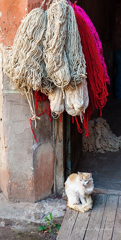 Maroc 0807