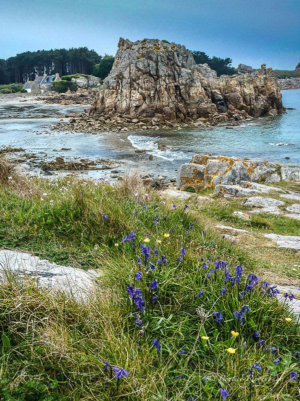 Bretagne 1020315