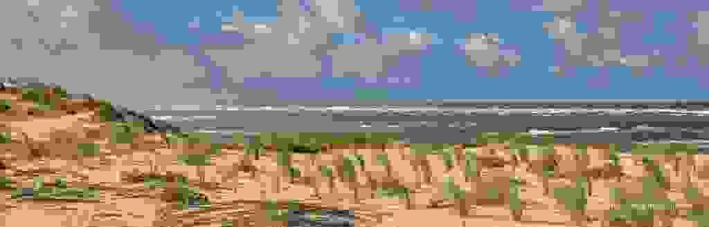 J1A6973151019-Panorama-2.jpg