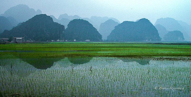 Vietnam 5420260205