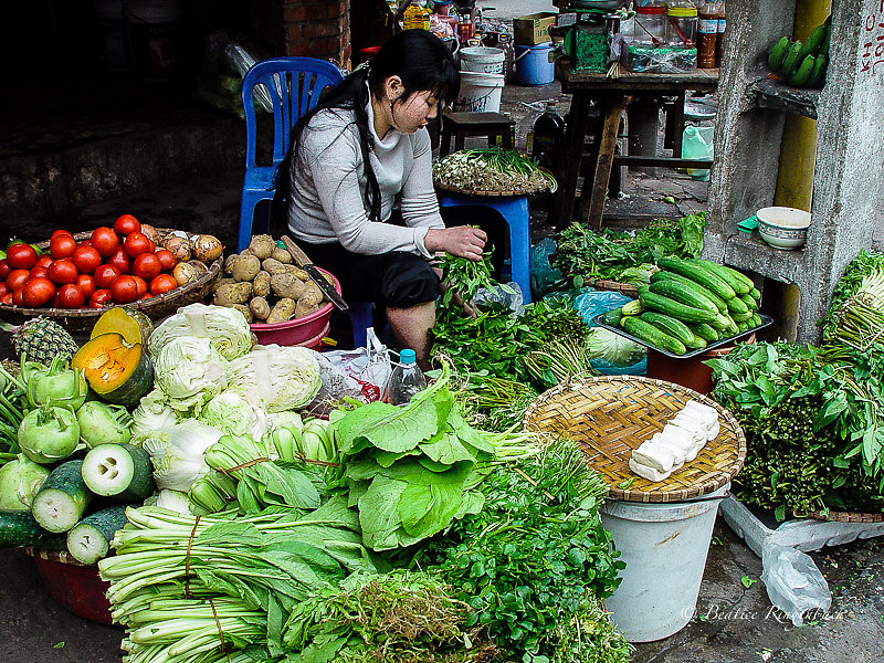 Vietnam 5984010305