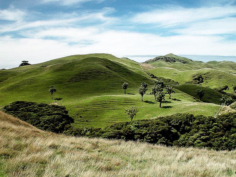 Nouvelle Zélande 6932100204