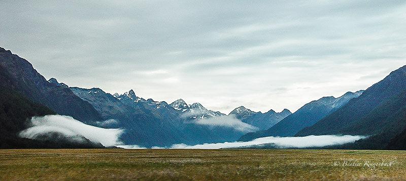 Nouvelle Zélande 7132150204
