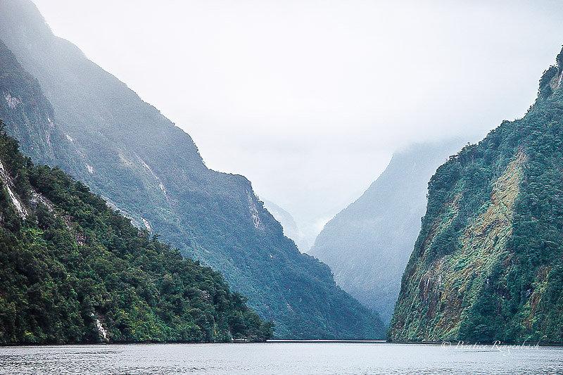 Nouvelle Zélande 7256170204